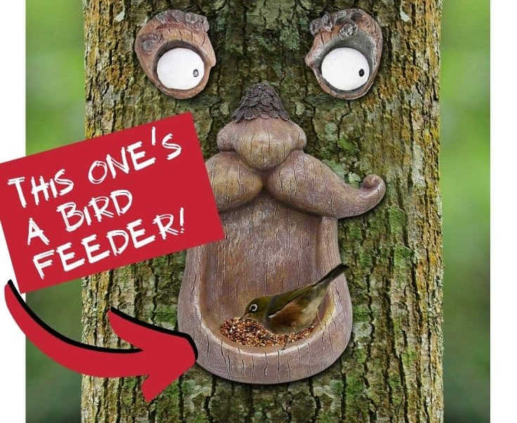 Photos Of All The Best Tree Faces & Talking Trees For Halloween Props… Or Year Round Fun!