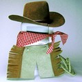 cowboy-costume-for-ipods.jpg