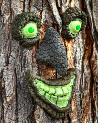 creepy-tree-face-by-chefranden.jpg
