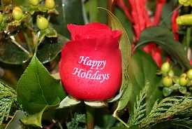 embossed-rose-happy-holidays.jpg