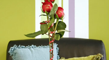Send Personalized Roses Inscribed With Your Own Message or Embossed With A Photo!