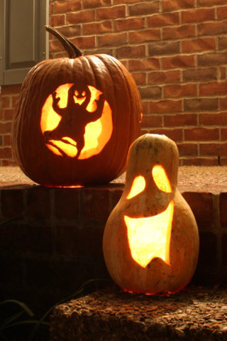 Pumpkin carvings of our spooky ghost and a goblin gourd.