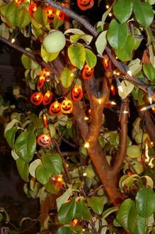 halloween-lights-in-tree-by-Vintage-Lulu.jpg