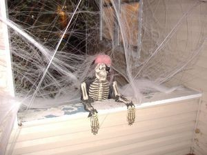 halloween-skeleton-cobwebs-Photos-o-Randomness.jpg