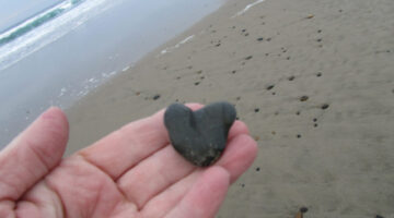 Natural Heart Shapes Found In Unusual Places