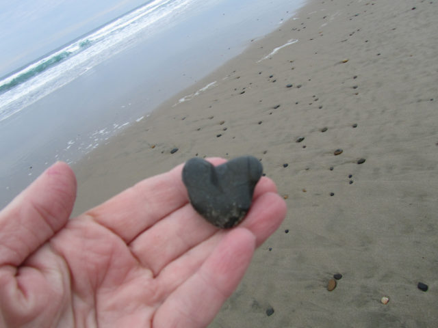 natural heart shapes found in unusual places the holiday