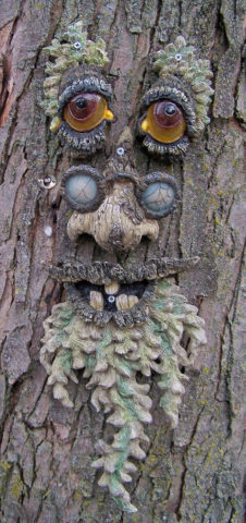 Another example of old man tree art. See how to make your own tree face art, talking trees, and more!