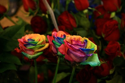 rainbow-roses-and-red-roses-by-lucentstreak.jpg