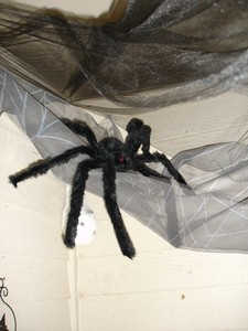 spider-and-netting-for-halloween-decorations-by-Merelymel13.jpg