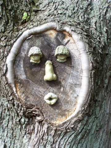 typical-tree-face-by-Valerie-Everett.jpg
