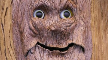 Photos: All The Best Tree Faces & Talking Trees For Halloween Props