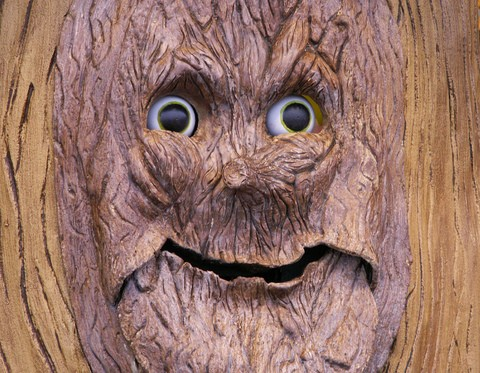 wood-man-tree-face-by-Sister72.jpg
