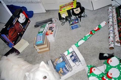 wrapping-presents-with-dogs